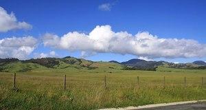 California - Paso Robles to San Simeon