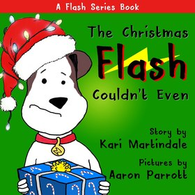 Flash book series