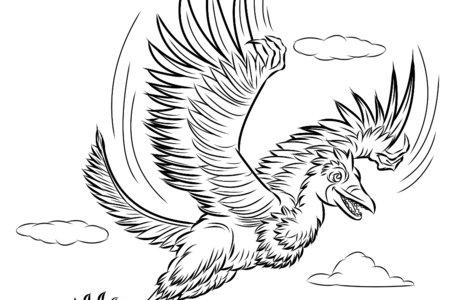 Dinosaur Discovery Book Line Art