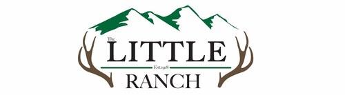 Little Ranch Logo Option #4