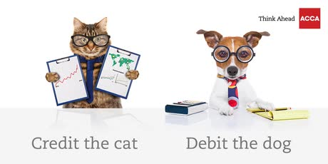 Pawsibly, an accountant's best friend. Whose yours?