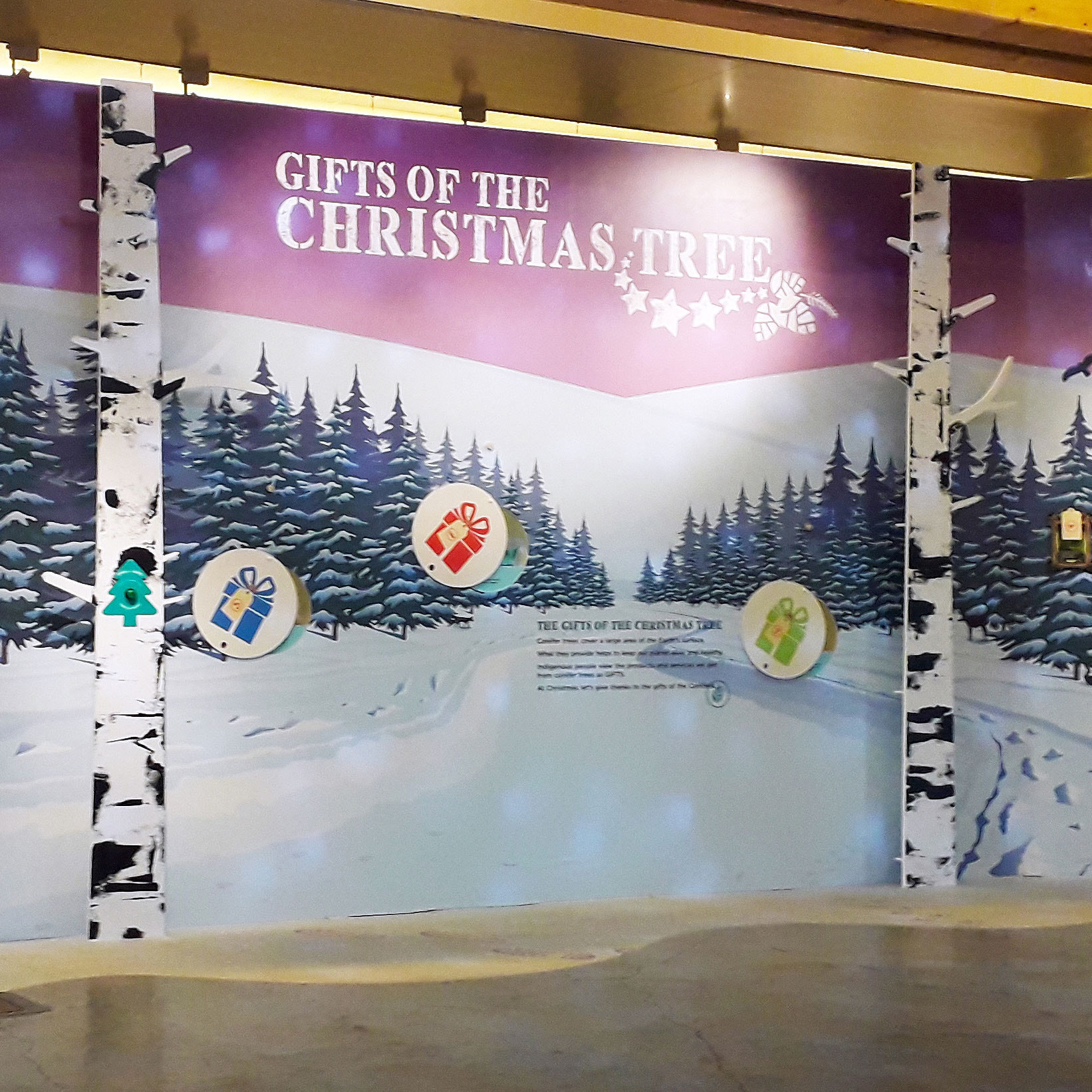 RBGE Gifts of the Christmas Tree exhibition/Interpretive design