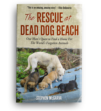 The Rescue at Dead Dog Beach | Book Cover Design 6