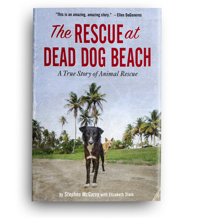 The Rescue at Dead Dog Beach | Front Cover Design 7