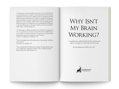 Why Isn't My Brain Working? | Interior Pages 1