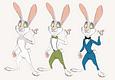 Suited rabbit concept